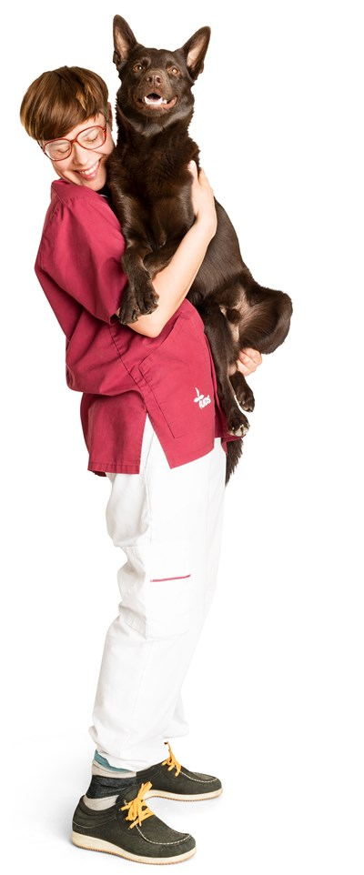 Animal caretaker with a large dog in her arms. Photo.